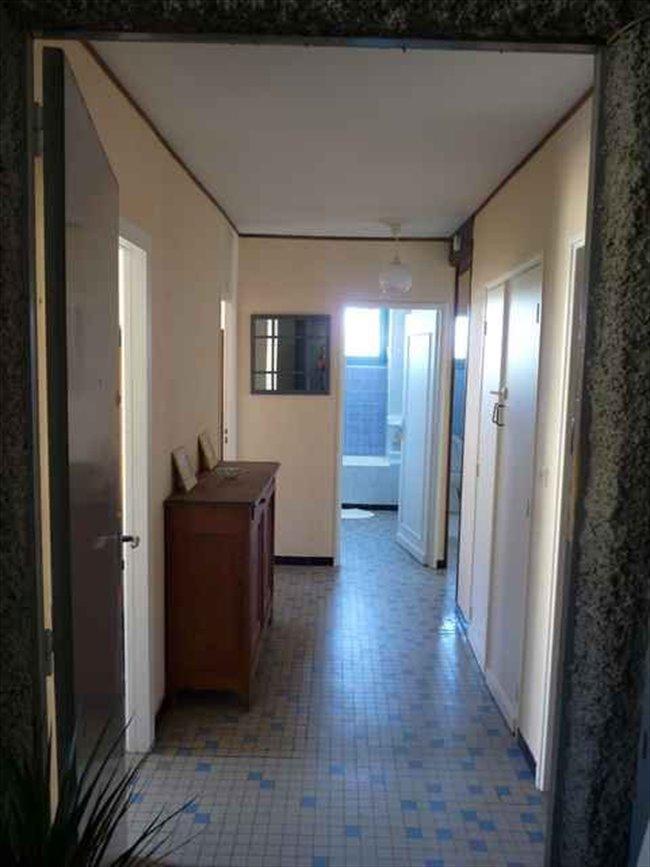 colocation toulouse t4 m tro mermoz coloc pour fille appartager. Black Bedroom Furniture Sets. Home Design Ideas