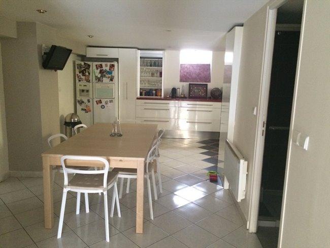 Colocation dans appartement terrasse 100m2 sathonay camp for Cherche appartement avec terrasse
