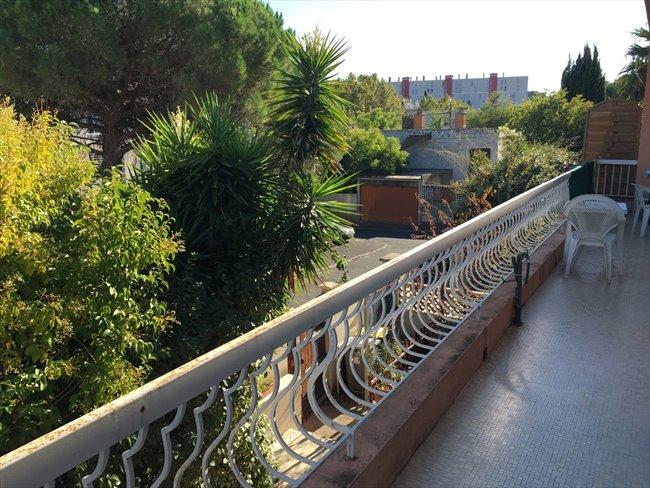 Colocation montpellier maison avec jardin montpellier quartier les c vennes appartager - Maison jardin condominium montpellier ...
