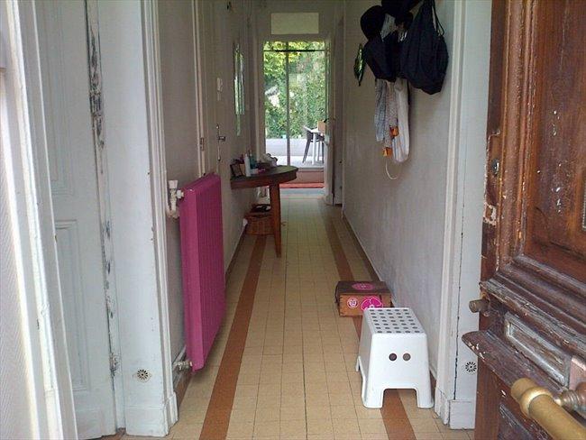 Colocation B Gles Loue Grande Chambre Et Salle D 39 Eau