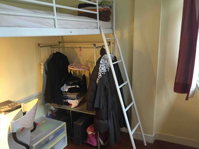 Roomshare - Sheung Wan -  $5900 Nice big, newly decorated room in Sheung Wan (Sheung Wan)  | EasyRoommate - Image 1