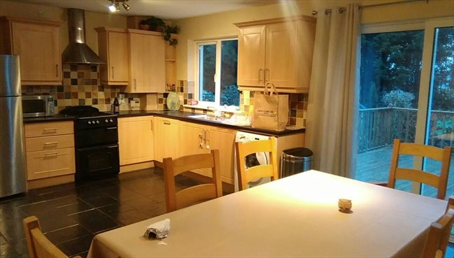 Room to rent in Cork - Double bedroom available - Image 3