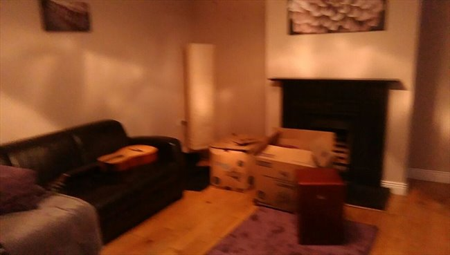 Room to rent in Cork - Double bedroom available - Image 4