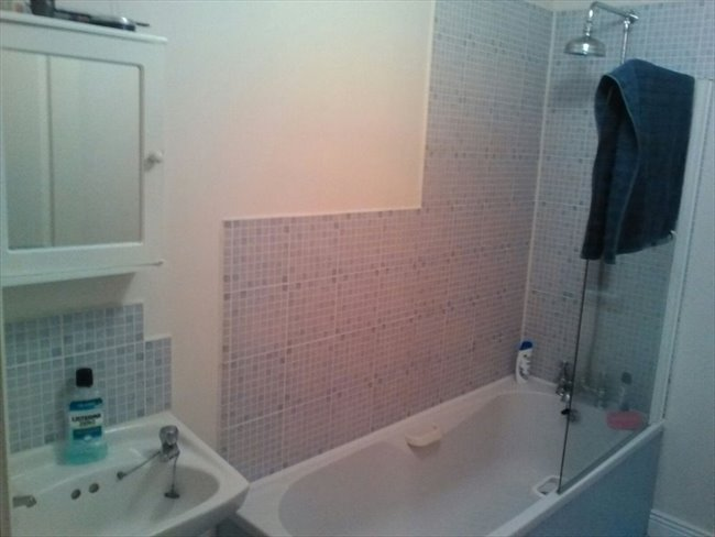 Room to rent in Cork - Double bedroom available - Image 5