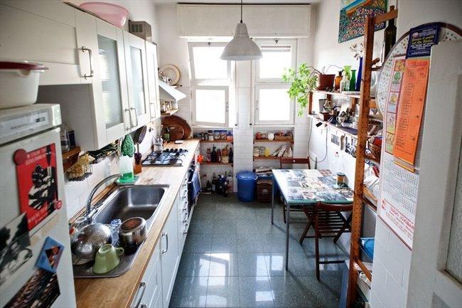 Stanze in Affitto - Marconi-Ostiense - Garbatella affitto camera con balcone | EasyStanza - Image 8