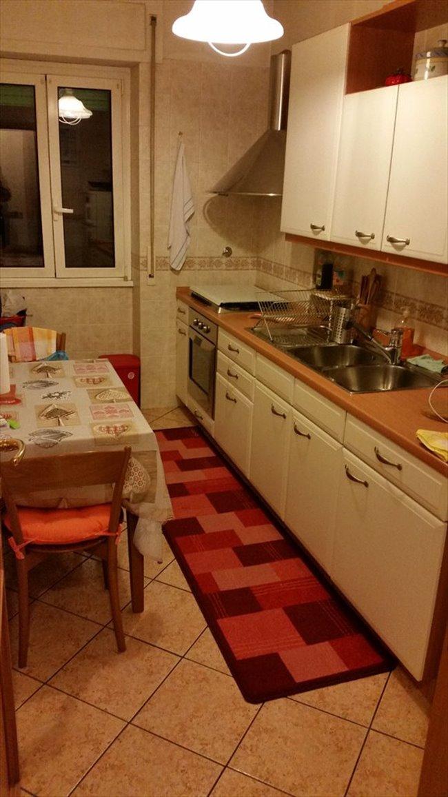 Stanze in Affitto - Don Bosco-Cinecitta' - AFFITTO CAMERA AMMOBILIATA IN APPERTAMENTO | EasyStanza - Image 3