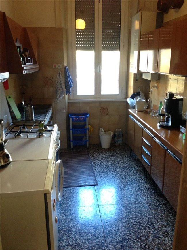 Stanze e posti letto in affitto prati clodio metro a for Affitto roma ottaviano