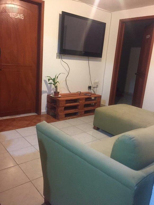 Cuartos en Renta - Coyoacán - La casita | CompartoDepa - Image 5
