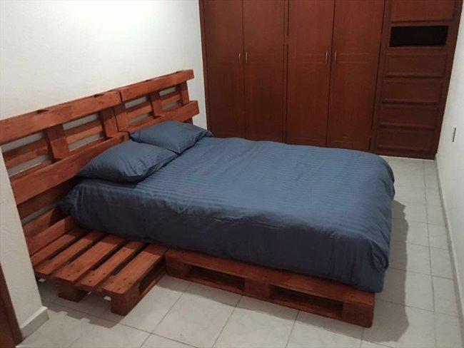 Cuartos en Renta - Coyoacán - La casita | CompartoDepa - Image 8