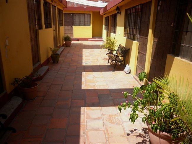 Cuartos en Renta - Puebla - Estancia exclusiva a estudiantes UPAEP,  ISU o IEU. | CompartoDepa - Image 3
