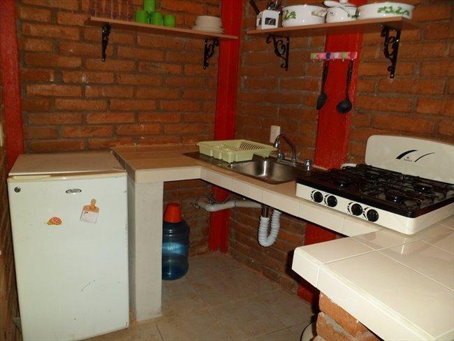 Rento Departamento Amueblado en el Centro de la Cd -  - Image 4