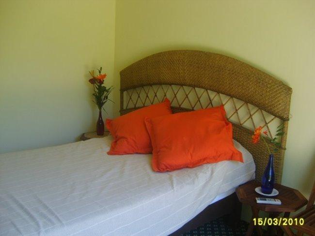 ESTUDIOS AMUEBLADOS - Playa del Carmen, Cancún - Image 2