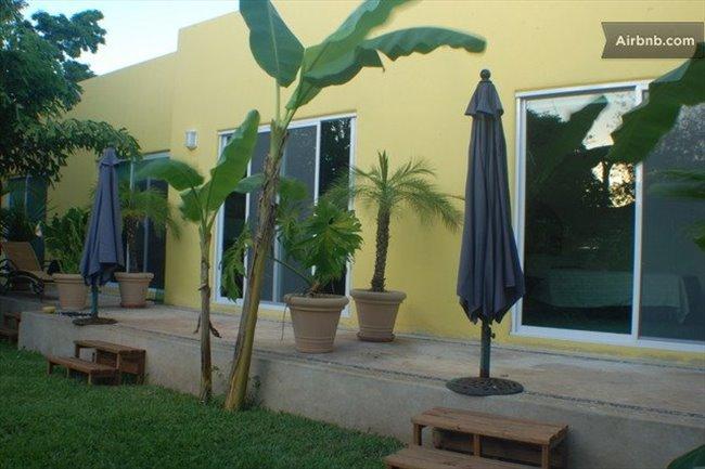 ESTUDIOS AMUEBLADOS - Playa del Carmen, Cancún - Image 8