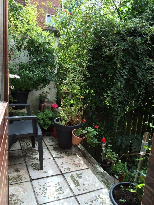 Kamers te huur - Schiedam - Furnished rooms for rent   EasyKamer - Image 1
