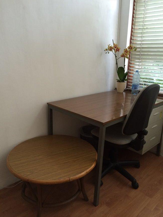 Kamers te huur - Schiedam - Furnished rooms for rent   EasyKamer - Image 3