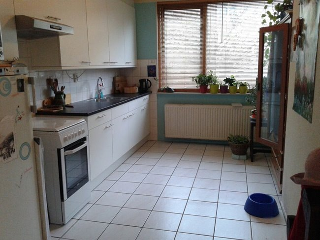 Kamers te huur in Amstelveen - Available 30 March 2017 in Amsterdam ***female only***  clean, neat & tidy | EasyKamer - Image 6