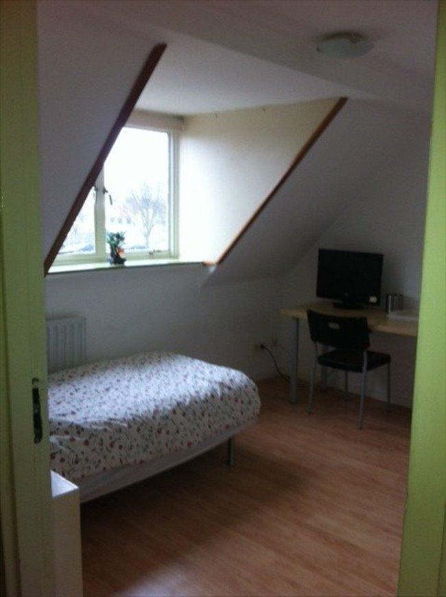Kamers te huur in Eindhoven - Zeer leuke gemeubileerde kamer te huur.   EasyKamer - Image 1
