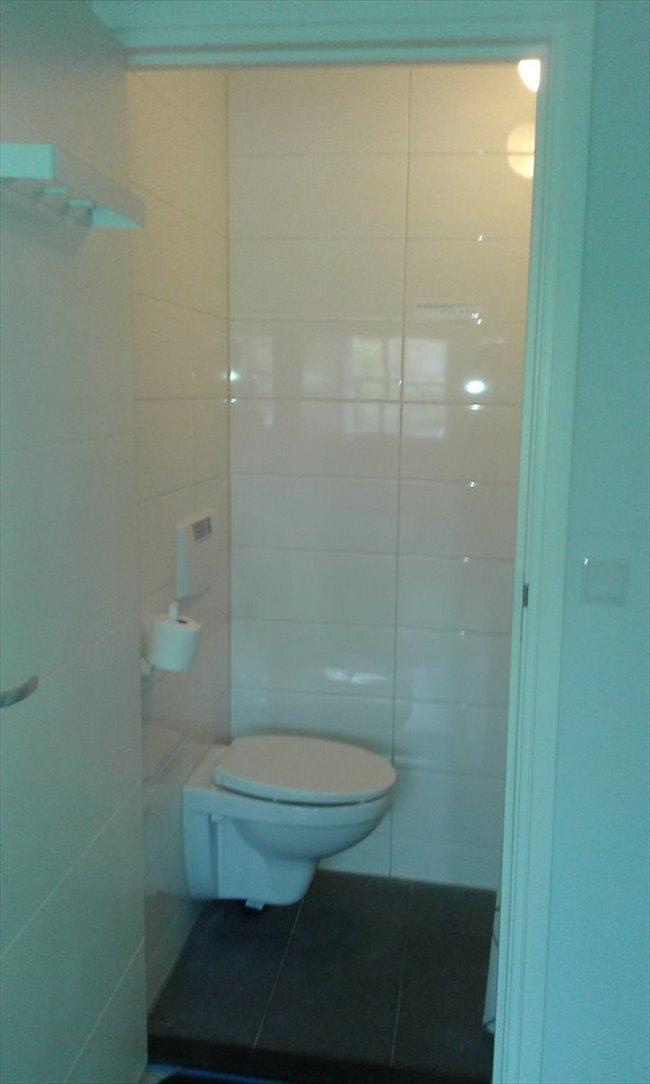 Kamers te huur in Alkmaar - Kamer(s) te huur Alkkmaar | EasyKamer - Image 4