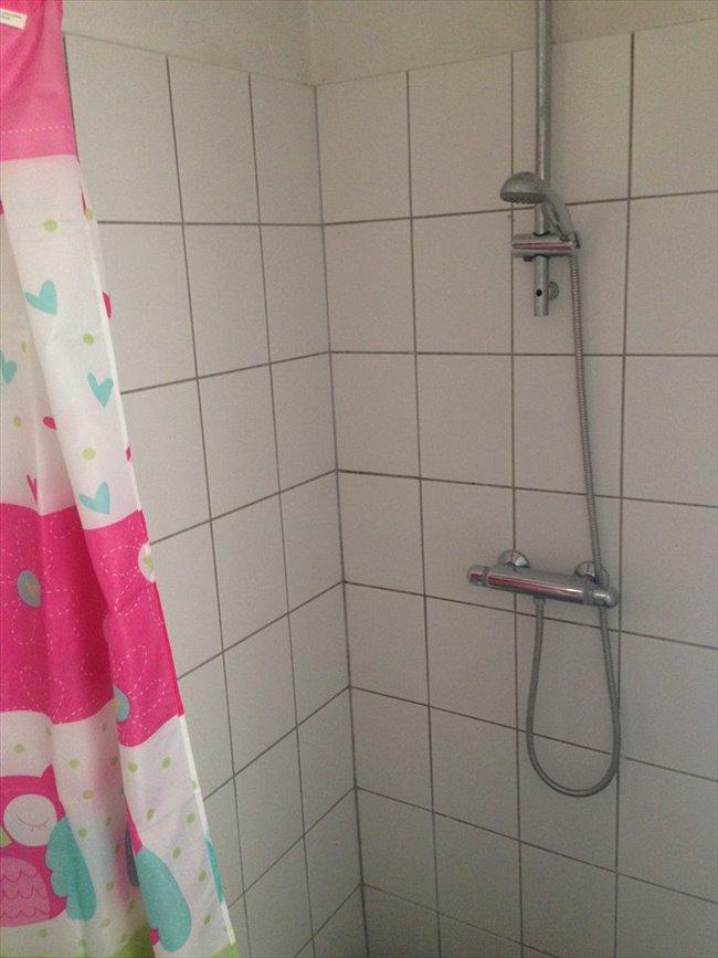 Kamers te huur - Maastricht - Nette kamer in studentenhuis   EasyKamer - Image 4
