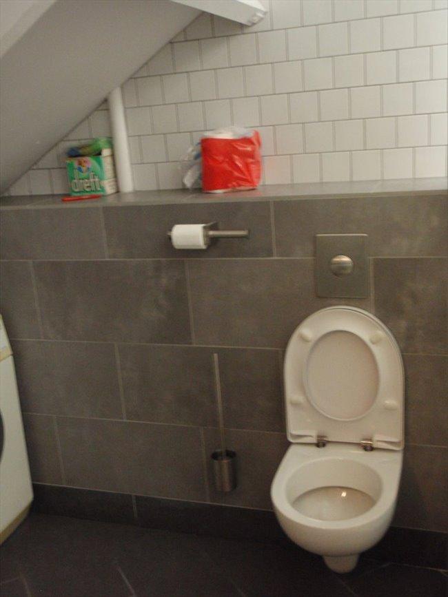 Kamers te huur in Eindhoven - Zolderverdieping met eigen keuken en badkamer | EasyKamer - Image 6
