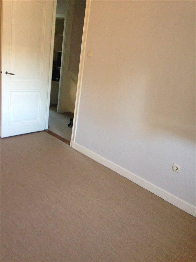 Kamers te huur in Haarlem - Nice 3BR full-house inHaarlem to share in pieter kiesstraat | EasyKamer - Image 2
