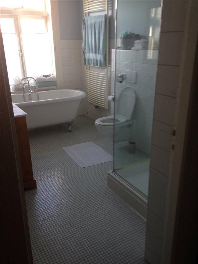 Kamers te huur in Haarlem - Nice 3BR full-house inHaarlem to share in pieter kiesstraat | EasyKamer - Image 3