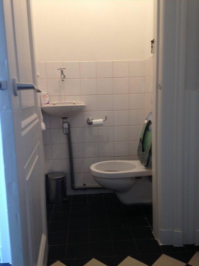 Kamers te huur in Haarlem - Nice 3BR full-house inHaarlem to share in pieter kiesstraat | EasyKamer - Image 4