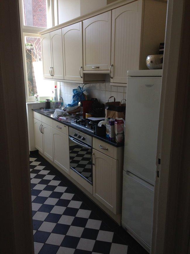 Kamers te huur in Haarlem - Nice 3BR full-house inHaarlem to share in pieter kiesstraat | EasyKamer - Image 6