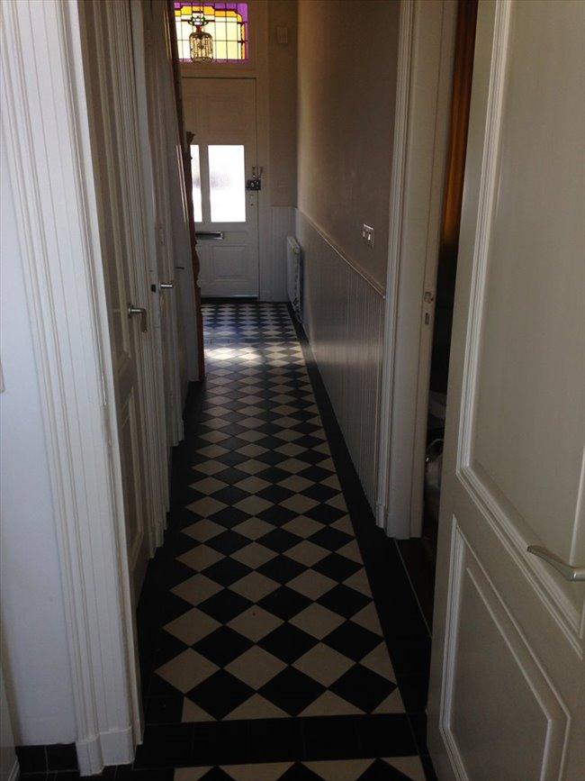 Kamers te huur in Haarlem - Nice 3BR full-house inHaarlem to share in pieter kiesstraat | EasyKamer - Image 7