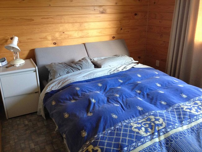 Room to rent in Invercargill - Quite mature flatmates welcome - Image 7