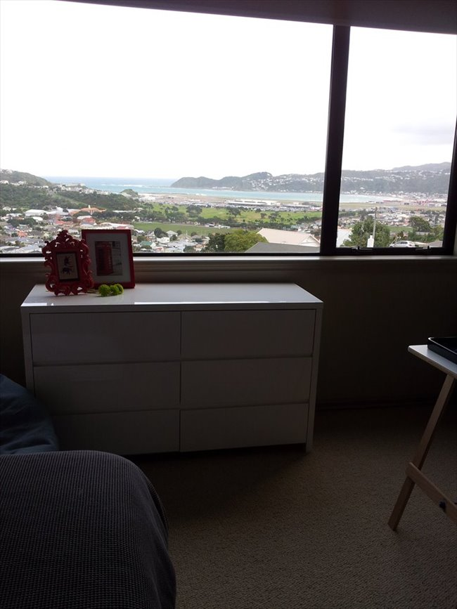 Room to rent in Wellington - Homestay/Boarder/Flatmate - Image 4