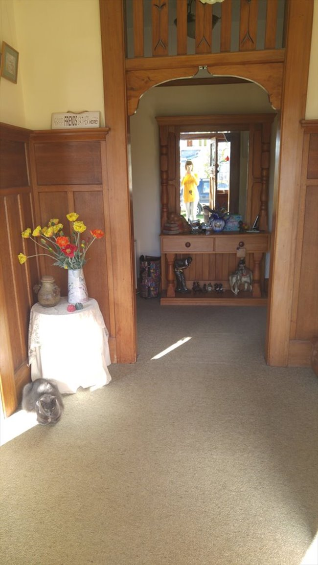 Flatshare - Christchurch - Couple?  New to ChCh?  I can help. | EasyRoommate - Image 7