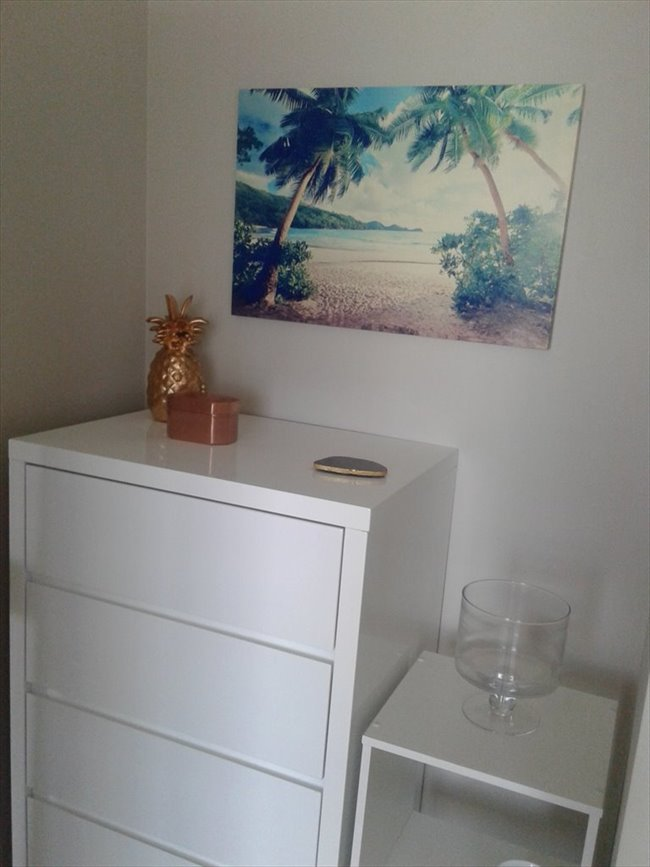 Room to rent in Wellington - Homestay/Boarder/Flatmate - Image 5