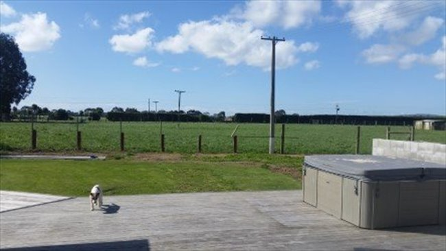 Room to rent in Invercargill - flatmates wanted  - Image 3