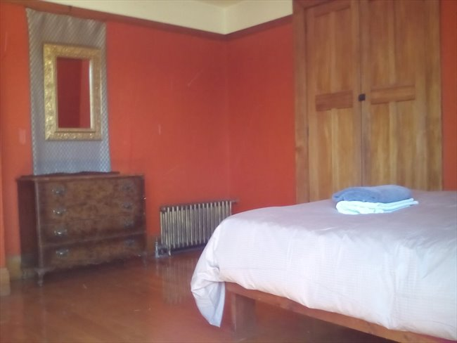 Flatshare - Christchurch - Neat room in big house | EasyRoommate - Image 2
