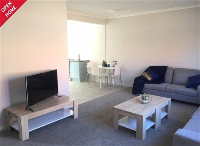 Room to rent in Napier - Short or Long Term Accomodation Hastings Central - Image 1