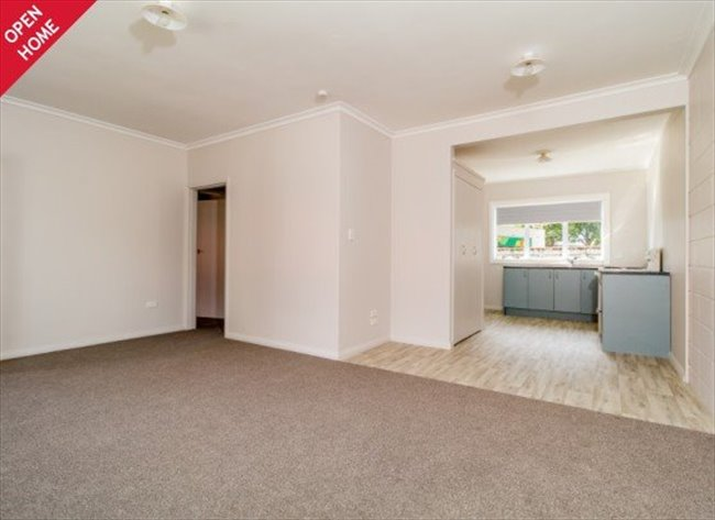 Room to rent in Napier - Short or Long Term Accomodation Hastings Central - Image 2