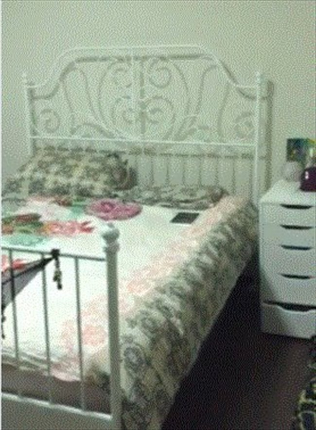 Roomshare - Commonwealth - Near Buona Vista, large renovated HDB room, high level, fully furnitured, with Air con | EasyRoommate - Image 4
