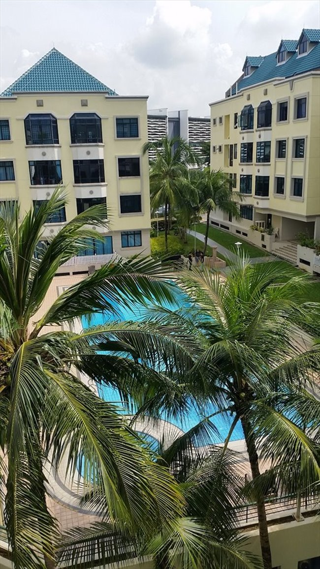 Room for rent in Woodleigh - EUROASIA PARK CONDO - Image 4