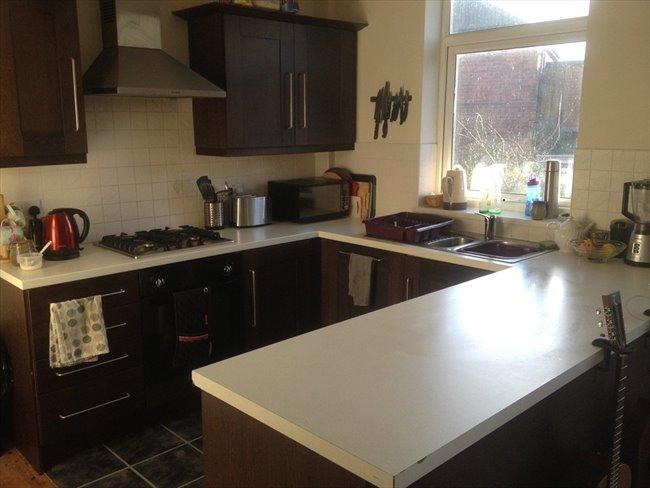 Room to rent in Benwell - 3 Bedroom Semi detached house on quiet U Street - Image 2