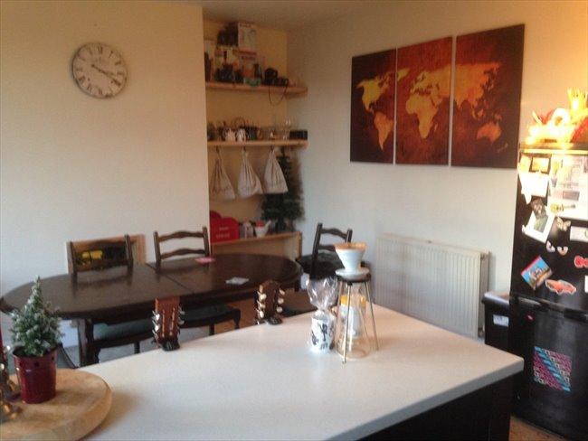 Room to rent in Benwell - 3 Bedroom Semi detached house on quiet U Street - Image 5