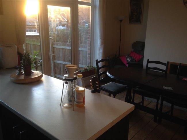Room to rent in Benwell - 3 Bedroom Semi detached house on quiet U Street - Image 6
