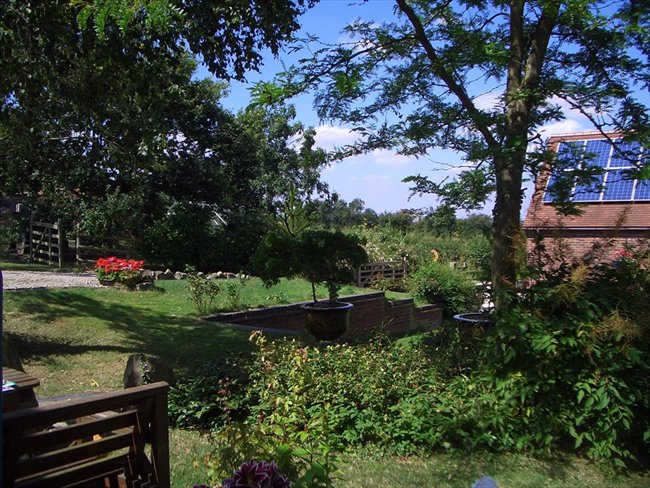 Room to rent in Rugby - County Cottage location, ground floor room with direct access. - Image 2