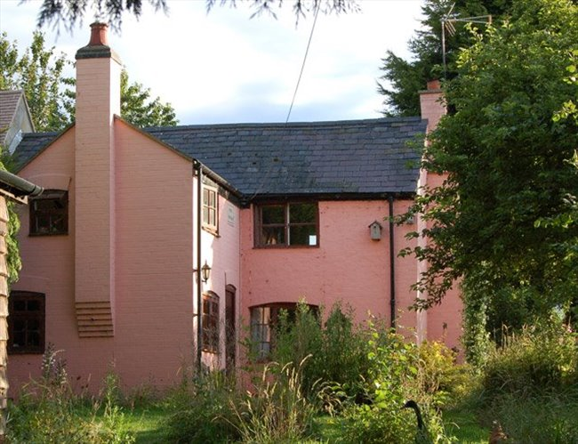 Room to rent in Rugby - County Cottage location, ground floor room with direct access. - Image 4