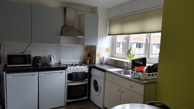 Room to rent in Mile End - Two Large Double rooms / 3 min to Mile End station  - Image 3