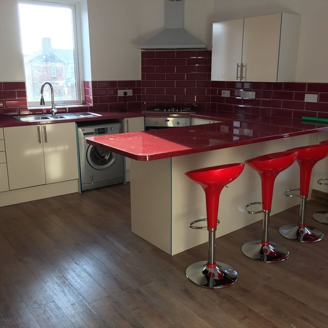 Room to rent in Adamsdown - ENSUIT ROOM TO LET  ,STUDENT ONLY - Image 1