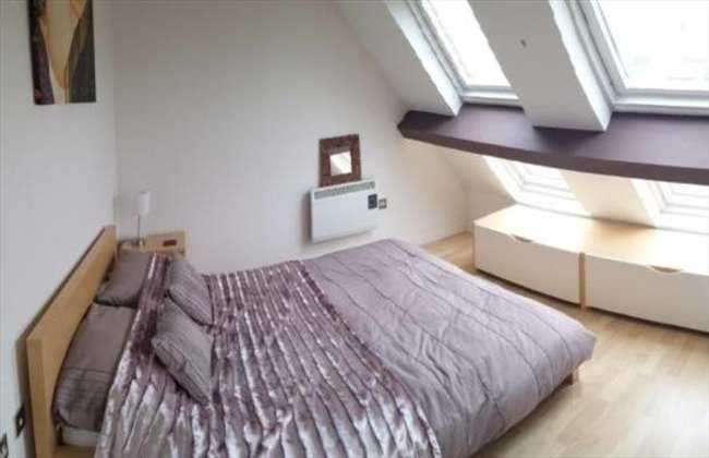 Room to rent in Wolverhampton - Double ROOM IN BEAUTIFUL City Centre PENTHOUSE  near Train & Bus - Image 5