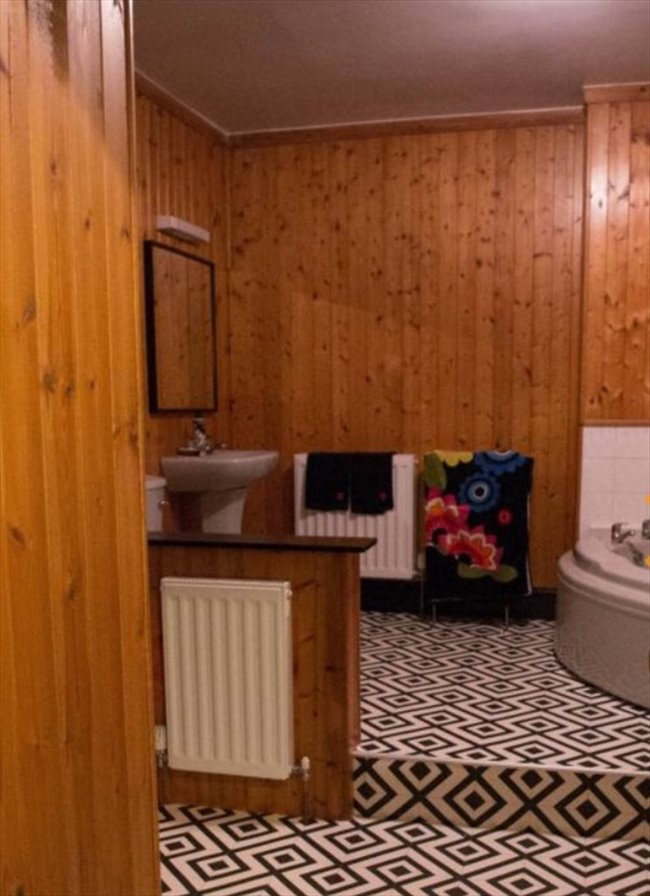 Room to rent in Gateshead - Large room in very large friendly houseshare - Image 3