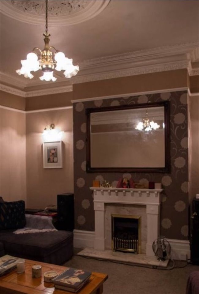 Room to rent in Gateshead - Large room in very large friendly houseshare - Image 5