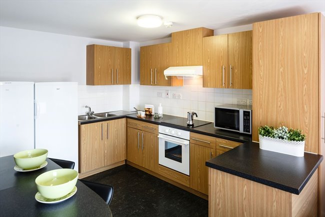 Room to rent in Potternewton - A room 10 mins from Leeds Uni - Image 2